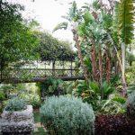 wedding-gibraltar-botanical-gardens-caleta-hotel-092014-4