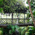 wedding-gibraltar-botanical-gardens-caleta-hotel-092014-5